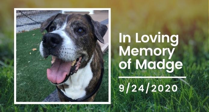 In Memory of Madge 9-2020