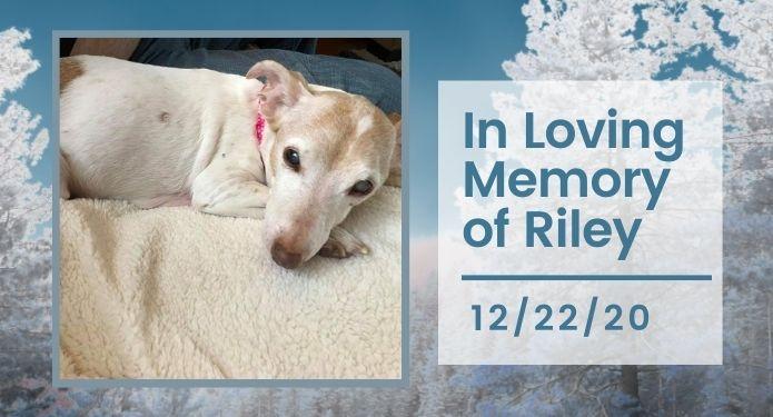 Riley passed on December 22, 2020