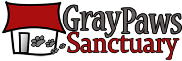 Gray Paws Sanctuary for abandoned senior dogs